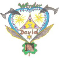 Logo Wender David